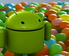Android&#8217;s next OS to be called Jelly Bean?